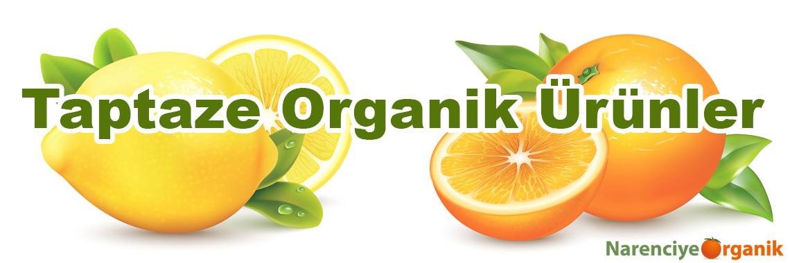 Taptaze Organik Ürünler